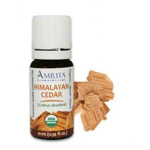 Organic Himalayan Cedar Essential Oil