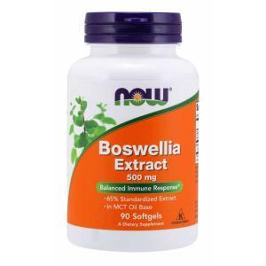 Boswellia Extract 500mg 90sg