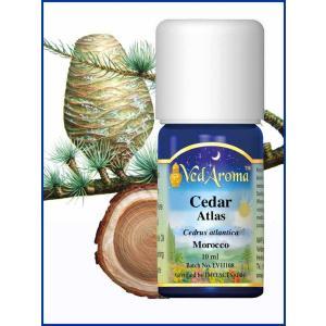 Cedar Atlas 10 ML
